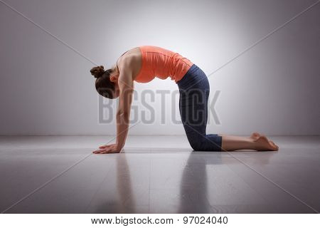 Beautiful sporty fit yogini woman practices yoga asana marjariasana - cat pose gentle warm up for spine (also called cat-cow pose) in studio