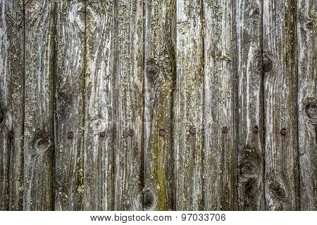 Old grunge fence of wood panels with with rusty nails, background texture