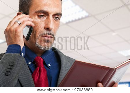 Businessman talking at the phone in his office