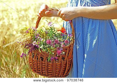 Woman holding basket with beautiful wildflowers outdoors
