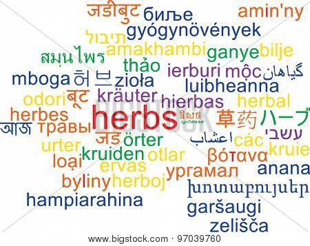 Background concept wordcloud multilanguage international many language illustration of herbs