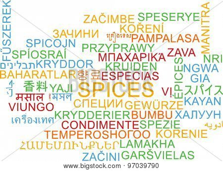 Background concept wordcloud multilanguage international many language illustration of spices