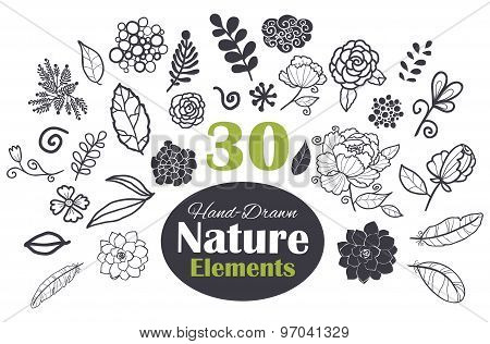 Vector Black White Natural Elements 30 Set Seamless Pattern