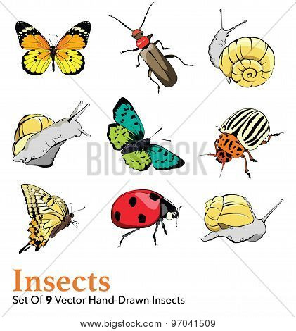 Vector Insects 9 Elements Set Seamless Pattern