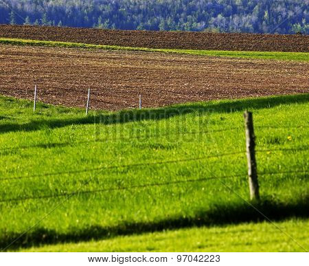 Farmland Fields Dirt Grass Fences