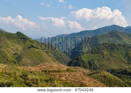 Green Forest On High Mountain In Laos