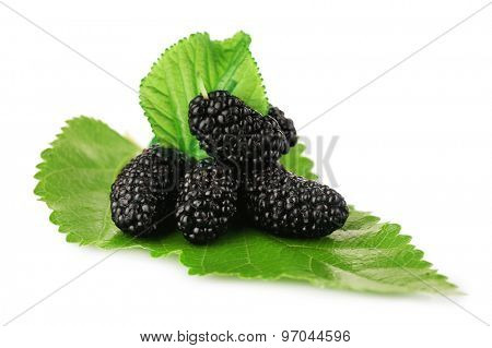 Fresh mulberry with green leaf isolated on white