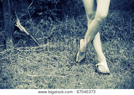 Beautiful Woman Legs In High Heel Shoes On The Grass