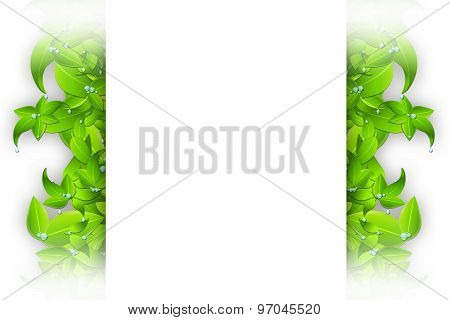 Isolated Leaves Frame