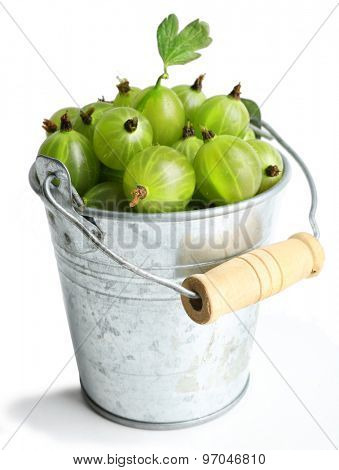 Green gooseberry in pail isolated on white