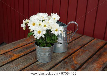 Beautiful Still Life Basket Of Flowers