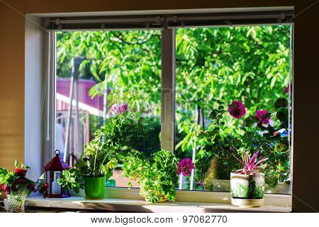 window in country house