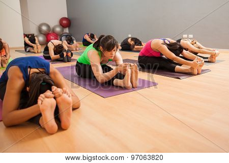 Large Group Of People Doing Yoga