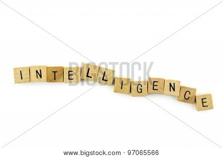 Intelligence Text On Wooden Cubes, Isolated On White Background