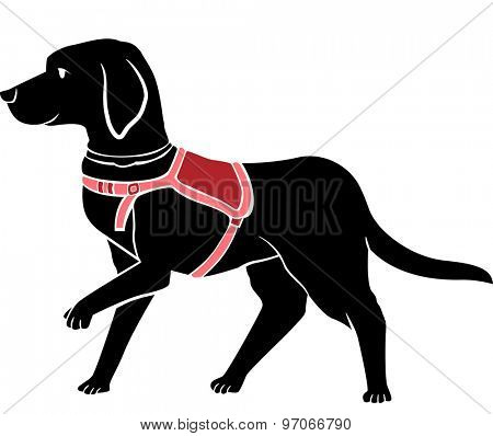 Stencil Illustration of a Black Labrador Working as a Guide Dog
