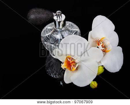 Luxurious Perfume Bottle Atomizer