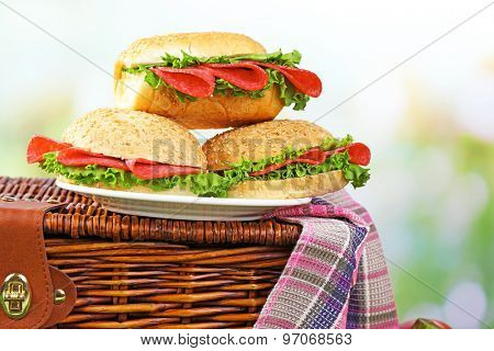 Tasty sandwiches on wicker picnic basket on green grass on blue background