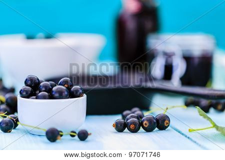 Blackcurrant - fresh blackcurrant fruit, healthy food