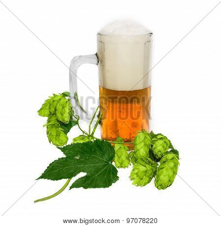 Mug Of Beer And Branch Of Hops
