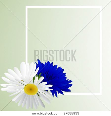 Template card with cornflower and camomile