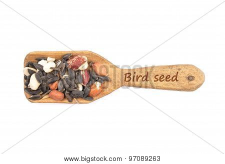 Bird Seed On Shovel
