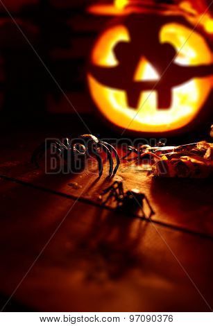Creepy spiders on background of burning gourd