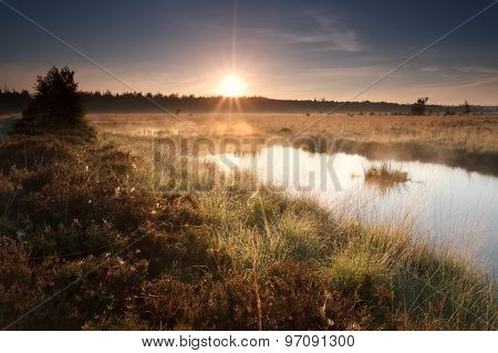 Gold Misty Sunrise On Lake