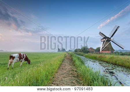 Cow On Pasture And Windmill By River