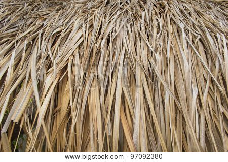 The Leaves Of Brown Thatched Roof, Used As Background