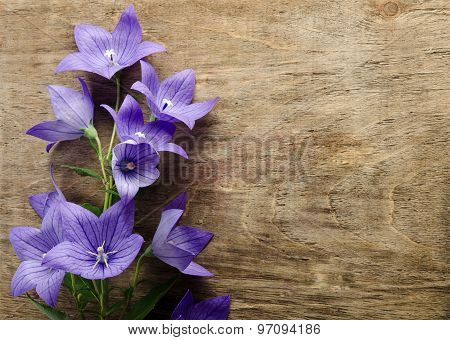Beautiful Bluebells On Wooden Background From Left Side
