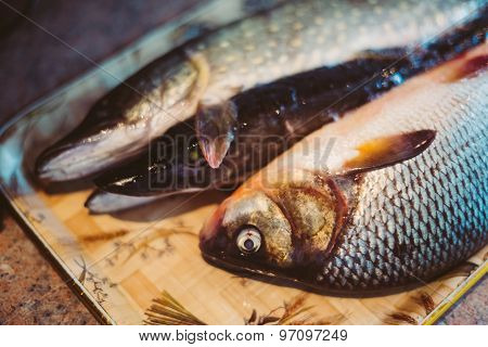 Raw Freshwater Fish Carp And Pikes