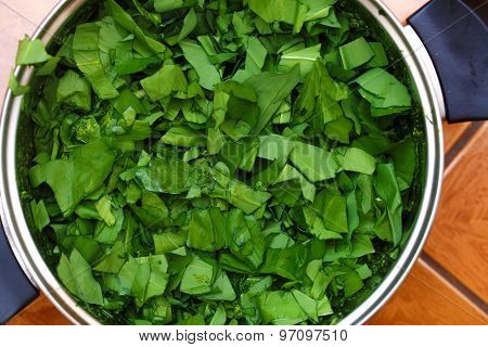 Green Leaves Of Close Up. Green Salad