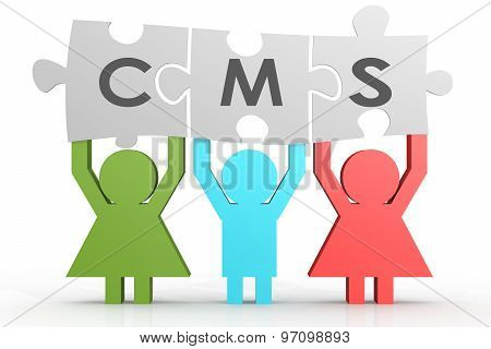 Cms - Content Management System Puzzle In A Line