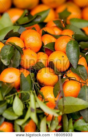 Close Up Of Tangerines