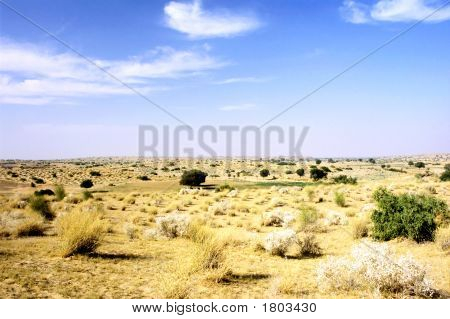 Thar Desert Landscape