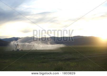 Pivot Sprinkler