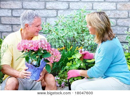Gardening. Senior couple with flowers and plants.