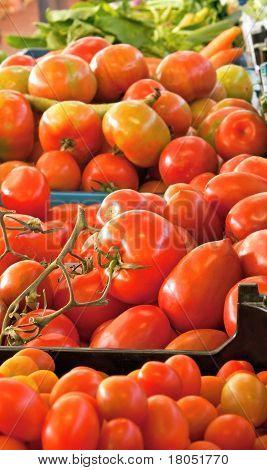 Fresh Tomotoes