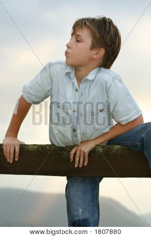 Boy Climbing On A Fence