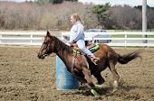 picture of barrel racing  - A teenage girl turns around a barrel and races to the finish line - JPG