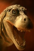 image of dinosaur-eggs  - Close up of a model T Rex from the museum - JPG