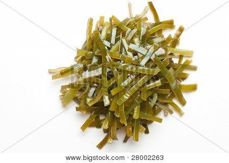 Laminaria (Algen)
