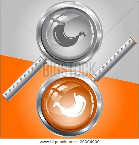 Stomach. Raster magnifying glass. Vector version is in my portfolio.