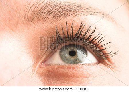 Eye #2
