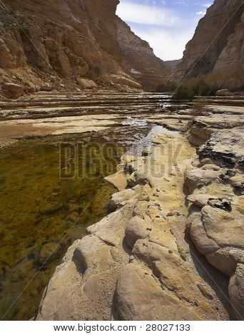 Standing marsh waters in a canyon in stone dry deserts