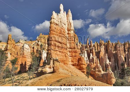 The well-known orange rocks in Bryce canyon in state of Utah USA