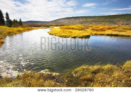 The picturesque twisting small river,  coast and yellow autumn grass