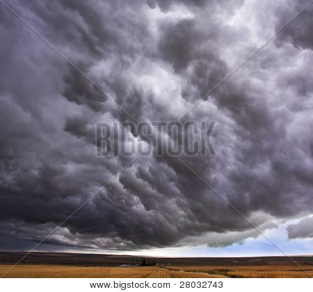 Enormous storm cloud above an autumn field