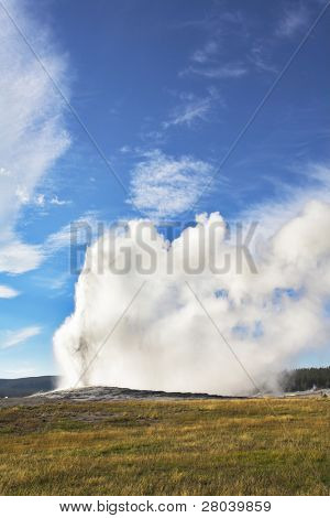 Boiling geothermal geyser in most well-known park of the world - Yellowstone  national park.