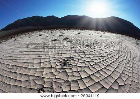 The bright morning sun in Death Valley. Dry brush on white cracked soil. Rhotograph Fisheye lens